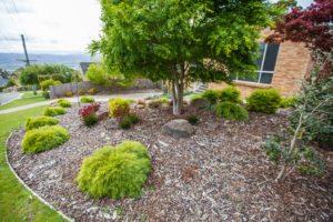 Simple, beautiful design garden