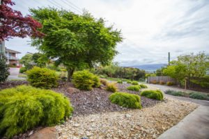 beautifully landscaped garden launceston
