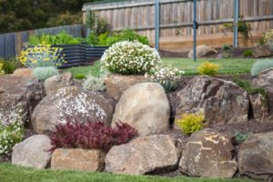 rock and boulder garden