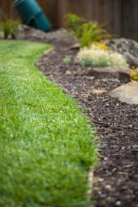 garden edging launceston beautiful lawn
