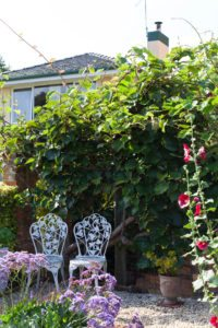 outdoor entertaining, cottage table and chairs, hedging